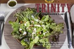 Trinity-Salada-Logo-web
